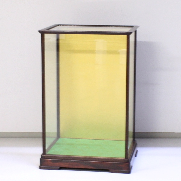 Glass Case (Wooden Frame) 208