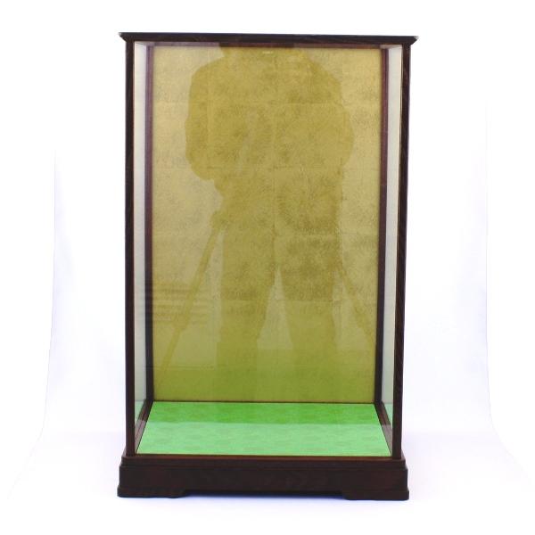 Wooden Frace Glass Case